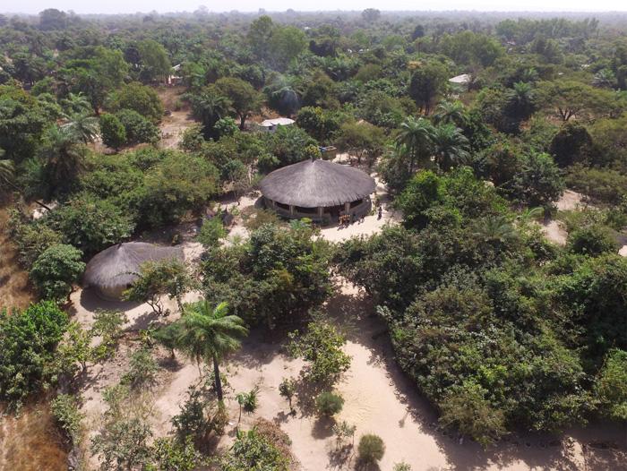 little-baobab-abene-casamance